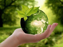 Çevre_Yeşil_Doğa_Görselleri