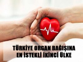 Organ_Bagisi_Hakkında_Görseller_Nebulaturkiye.com